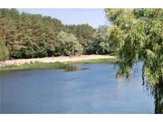 Продам санаторий на берегу Днепра (10 км от г. Черкассы). Площадь 62га - Фото 3