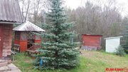 Дача в живописном месте возле озера, Продажа домов и коттеджей в Витебске, ID объекта - 503474034 - Фото 6