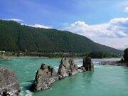 Алтай , берег Катуни, элитный участок Зубы Дракона - Фото 2