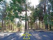 Лесной участок 15 соток на границе леса, Таширово, 60 км. от МКАД - Фото 1