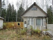 Продается участок в СНТ рядом с г.Пушкино - Фото 2