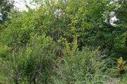 Продается дача в деревне Крутовец на участке 16 соток - Фото 4