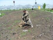 Земельный участок в п. Черницк - Фото 4