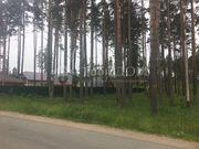 Земельные участки в Сосново