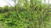 Продажа участка 24 сотки в д.Хомяково - Фото 4