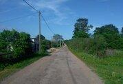 Купить земельный участок в деревне Шелонь, Шимского района - Фото 3
