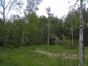 Лесной участок Новорижское шоссе 33 км, Земельные участки Писково, Истринский район, ID объекта - 201129878 - Фото 30