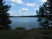 Дом на берегу озера в д.Гаврино. Окский Биосферный заповедник. - Фото 2