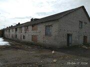 Продажа земельного участка в д. Лаголово, Ломоносовский р-н. - Фото 5