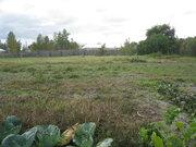 Продам земельный участок с домом в с.Панино - Фото 3