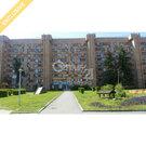 Торговое помещение с отличным ремонтом., Аренда офисов в Екатеринбурге, ID объекта - 600620049 - Фото 1