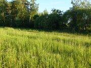 Деревня Митино участок 12,4 гектара Заокский район Тульская область - Фото 5