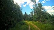 Чудесный земельный участок 2 Га. в лесу под строительство - Фото 2