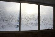 Тентюковская 455/1, Продажа квартир в Сыктывкаре, ID объекта - 325236998 - Фото 6