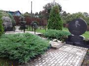 Два дома в СНТ имени Чебышева!, Дачи Воробьи, Демидовский район, ID объекта - 503007401 - Фото 41