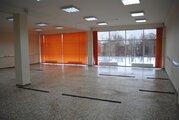 Торговое-офисное помещение 175 м2.Центр - Фото 3