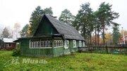 Участок, Загорянский - Фото 4