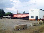 База на Васильева