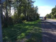Участок возле леса для кфх, для дачного строительства