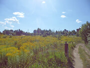 Продам участок 30 соток в д. Кондырева (район Мезенки, 4 км от Орла) - Фото 5
