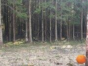 Продается участок, Минское шоссе, 45 км от МКАД - Фото 1