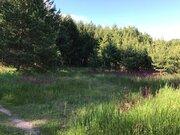 Продаю участок 19 соток в д. Плешково в 70 м. от залива реки Волга. - Фото 4