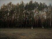 Участки в сосновом лесу от 8 соток - Фото 4