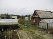 Продам дача ст глобус, Продажа домов и коттеджей в Екатеринбурге, ID объекта - 502580016 - Фото 11