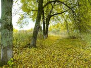 Киевское ш. 110 км от МКАД, Афанасово, Участок 18 сот. - Фото 4