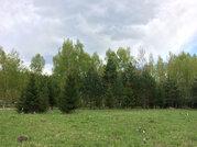Участок 15 соток в д. Горки - Фото 4