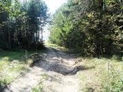 Участок 8 га на первой линии в Питкярантском р-н республики Карелия - Фото 3