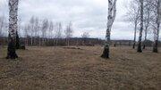 Продам земельные участки в д. Коржавино Муромского района - Фото 3