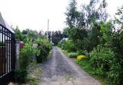 Участок в Одинцовском районе, д. Пестово. СНТ «Зевс» - Фото 1
