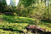 Продажа участка 9 соток на родине Льва Толстого в Ясной Поляне - Фото 3