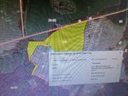 Продается земельный участок 27 га. Московская область, Можайский район - Фото 4