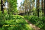 Прекрасный участок 40 соток в п. Кузьмоловский - Фото 5