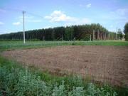 15 сот ИЖС в дер.Ратьково - 65 км Щёлковское шоссе - Фото 2