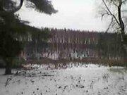 Зем. участок 3.5 га кфх с\х назначения вблизи д. Лазаревка Кашира. - Фото 2