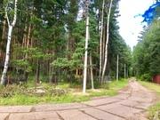 Лесной участок 6 соток дер. Копнино ИЖС - Фото 3