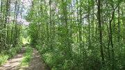 Продается земельный участок 25 сот в пос. Снетково вблизи 2-х озер