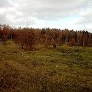 Участок в Новой Москве, Земельные участки в Москве, ID объекта - 202267485 - Фото 8