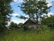 2 гектара со старым домом в д. Богданово Пушкиногорского района - Фото 4