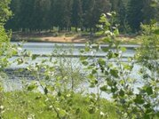 От собственника, участок на берегу реки Хотча, через 500 метров Волга - Фото 1