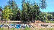 Участок 12 соток с лесными деревьями КИЗ «Зеленая Роща». - Фото 1