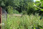 Продается участок у края леса в д. Сергеиково - Фото 2
