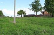 Земельный участок в д.Грязи - Фото 3