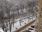 1-комн. квартира, Аренда квартир в Ставрополе, ID объекта - 323295605 - Фото 8