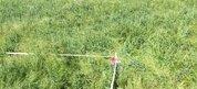 Продажа участка, Мирное, Симферопольский район, Ул. Молочная - Фото 1