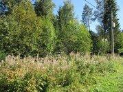 """Роскошный лесной участок 12 соток, Минское шоссе, """"зелёная роща"""", охр."""