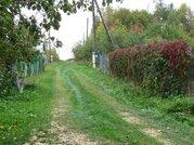 Продается земельный участок в д. Ледово Озерского района - Фото 5